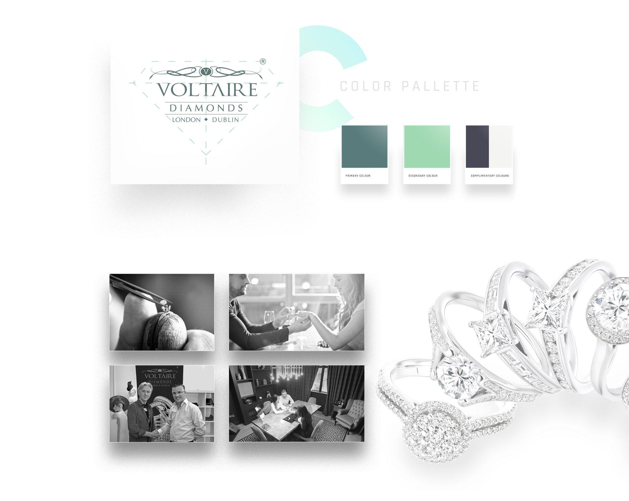 Voltaire Portfolio6b